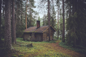 The unedited cabin in the woods